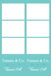 tamaras-15th